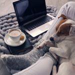 Vivre avec un chien à la maison ou en appartement